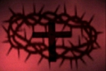 Cross_and_thorns